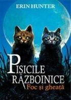 Cartea 2 Pisicile Războinice. Foc și gheață