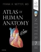 Netter Atlas of Human Anatomy. 7th Revised edition